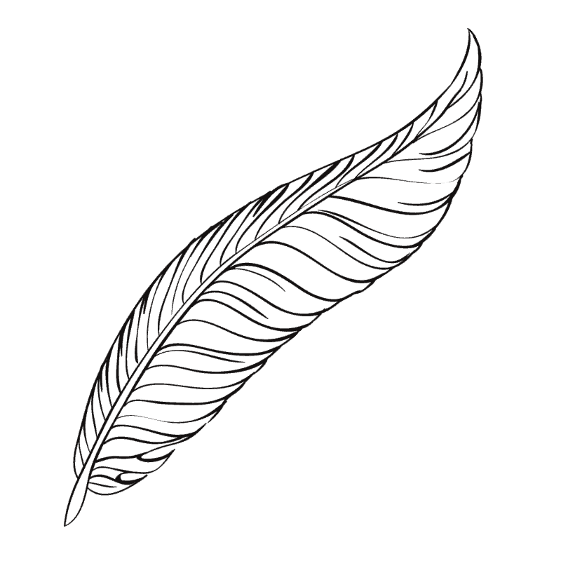 The robe of feathers