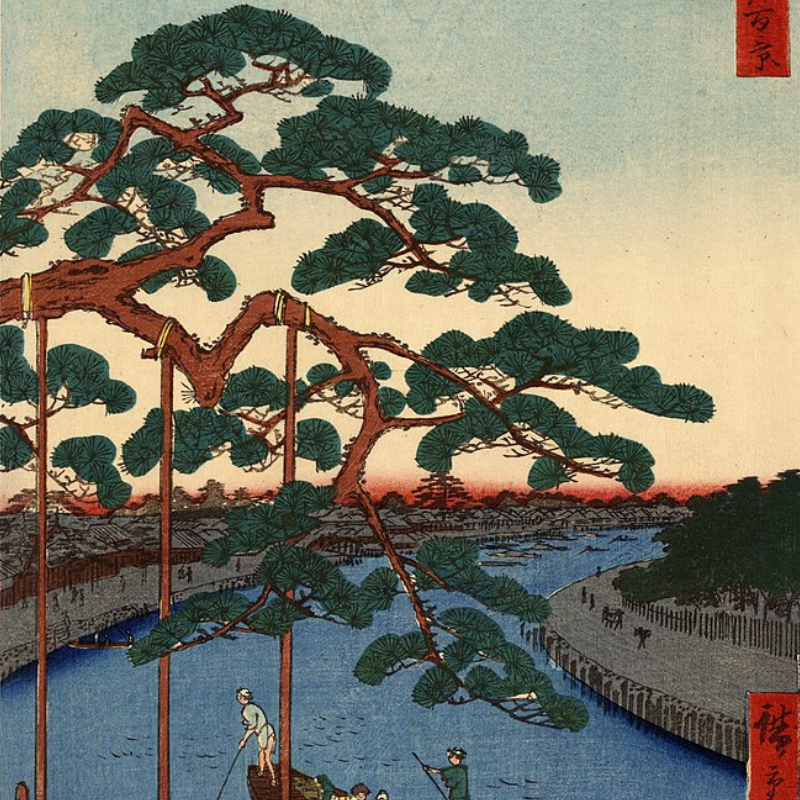 The Wind in The Pine Tree Illustration