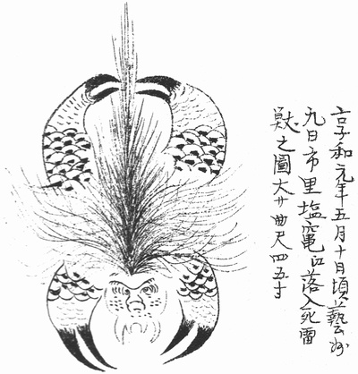 The Raiju of Kikashu