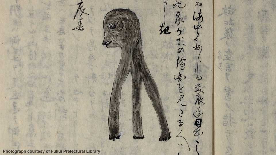 Image showing an amabiko, the predecessor yokai to the amabie